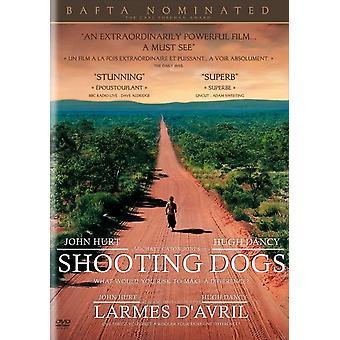 Tiro de perros Movie Poster (11 x 17)