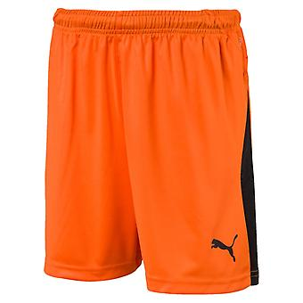 PUMA League of shorts Jr kids of soccer shorts Golden poppy-black