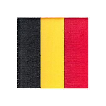 Partij gunsten Belgische lint 1 cm breed, 25 m