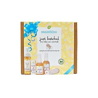 Mambino Organics Just Hatched Baby Arrival Kit (5pcs)