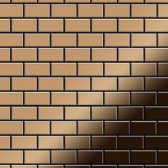 Metal mosaic Titanium ALLOY House-Ti-AM