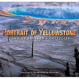 Portrait de Yellowstone: terre de Geysers et de grizzlis