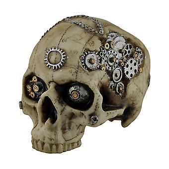 Mapa de cabeça mecânica Steampunk crânio estátua w/esboçou mapa 7 em.