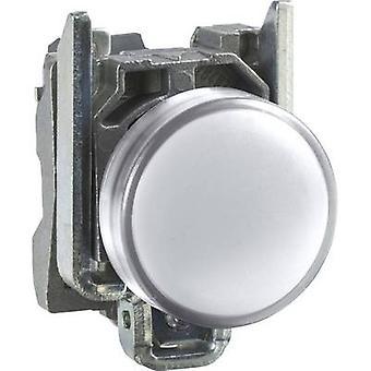 ランプ ホワイト 24 Vdc、24 V AC シュナイダー電気 XB4BVB1 1 pc(s)