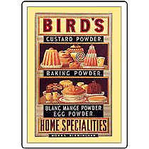 Birds Custard Powder/Specialties steel Fridge Magnet