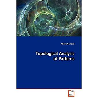 Topological Analysis of Patterns by Gameiro & Marcio