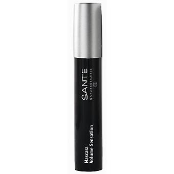 Sante Mascara Pestañas 01 Volume Sensation