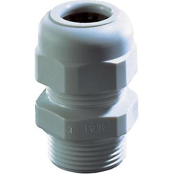 Cable gland PG9 Polyamide Black Wi