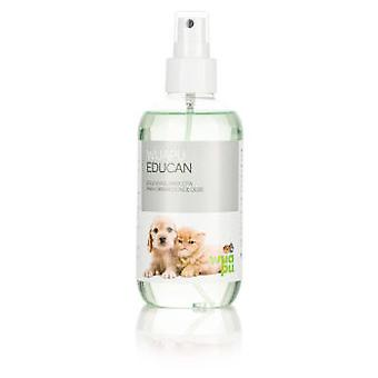 Wuapu Educan 200ML