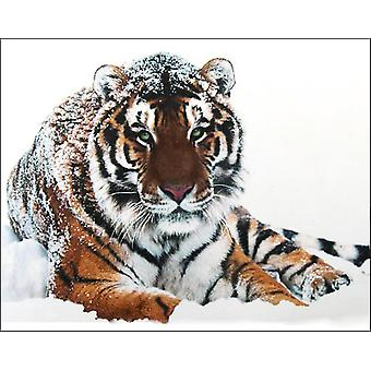 Collection D'art Diamond Embroidery/Printed/Gem Kit 48X38cm-Tiger On The Snow