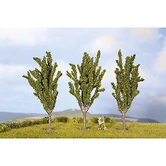 Tree set Poplars 55 up to 55 mm NOCH 25525 Green 3 pc(s)