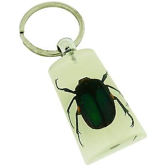 The Olivia Collection Glow in Dark Bug Key Ring with REAL Green Chafer Beetle