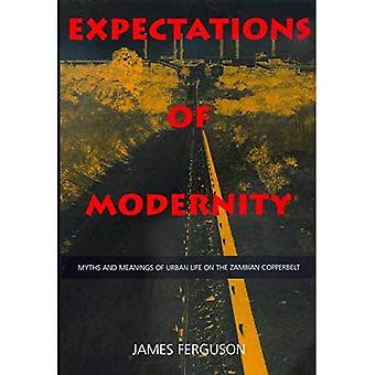 Expectations of Modernity  Myths & Meanings of Urban Life on the Zambian Copperbelt (Paper): Myths and Meanings of Urban Life on the Zambian Copperbelt (Perspectives on Southern Africa)