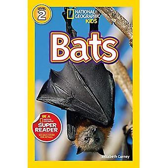 Fledermäuse! (National Geographic Leser Serie)
