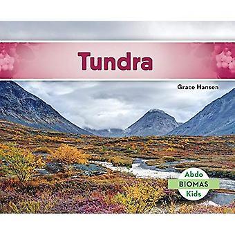 Tundra (Tundra Biome) (Biomas (Biomes))