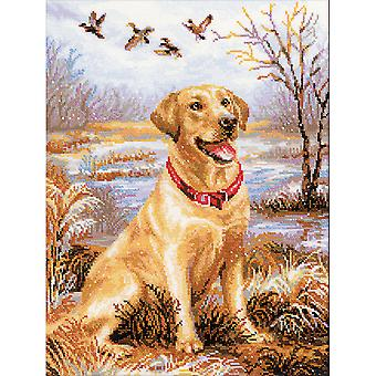 Labrador Counted Cross Stitch Kit-11.75