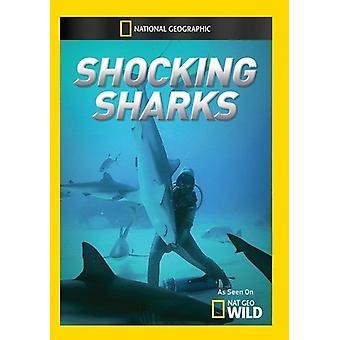 Schockierende Haie [DVD] USA import