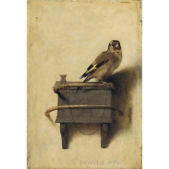 Carel Fabritius - The Goldfinch 1654 Poster Print Giclee
