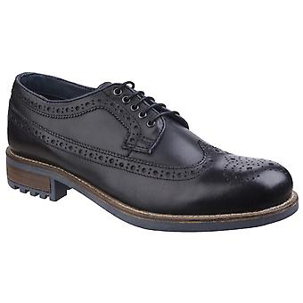 Brogue robe chaussure Cotswold Cotswold peuplier masculine