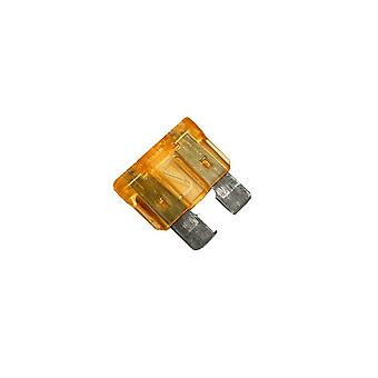 Raypak 013733F 5A Fuse for Heater