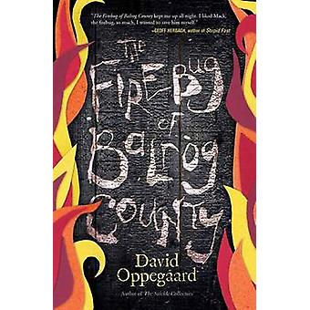 The Firebug of Balrog County by David Oppegaard - 9780738745435 Book