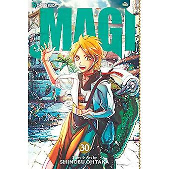 Magi, Vol. 30: Labyrint av Magic (Magi)