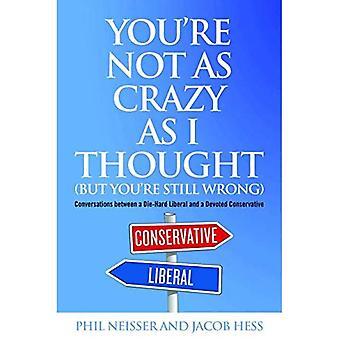 Du är inte så galen som jag trodde (men du är fortfarande fel)