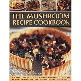 Svamp recept kokboken