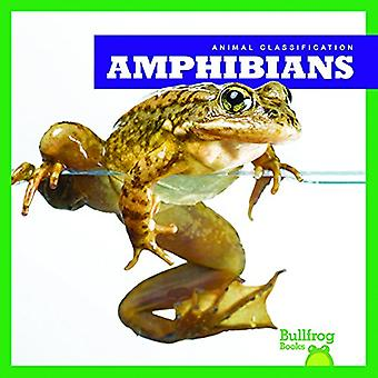 Amphibians by Erica Donner - 9781620315903 Book