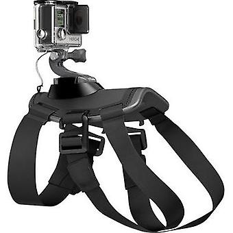 Dog harness GoPro Fetch (Dog Harness) ADOGM-001 Suitable for=GoPro