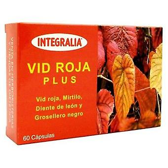 Integralia Red Vine Plus 60 Kapseln