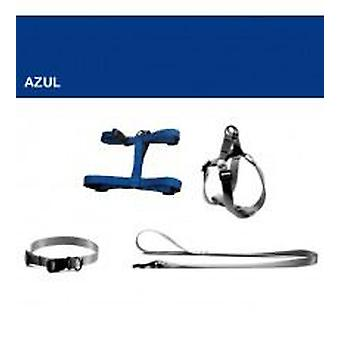 Yagu Basic Blue Collar (Dogs , Walking Accessories , Collars)