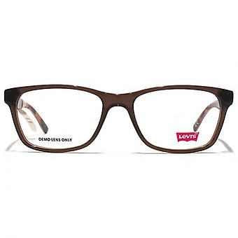Levis Retro Style Glasses In Brown