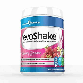 EvoShake Meal Replacement Whey Diet Shake 420g Weight Loss Shake with Protein - Strawberry - Meal Replacement Shakes - Evolution Slimming