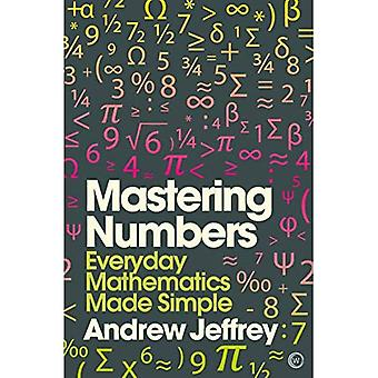 Mastering Numbers: Everyday Mathematics Made Simple (Mindzone)
