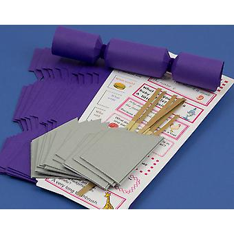 100 MINI Rich Purple Make & Fill Your Own Cracker Making Craft Kit