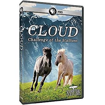 Nature: Cloud: Challenge of the Stallions [DVD] USA import
