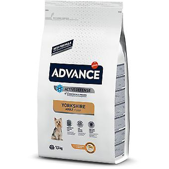 Advance Yorkshire Terrier (Dogs , Dog Food , Dry Food)