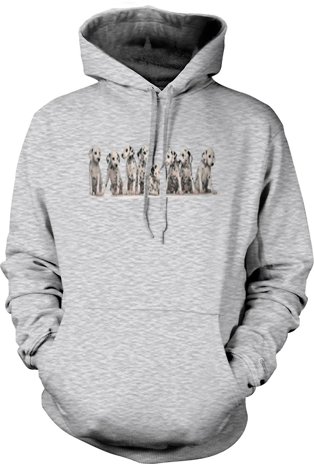 Mens Hoodie - Cute Dalmation Puppies