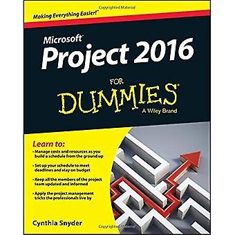 Progetto 2016 per Dummies