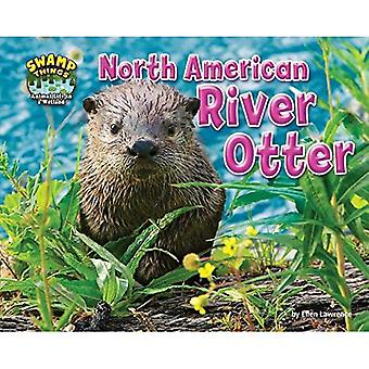 River Otter (Swamp Things: Animal Life in a Wetland)