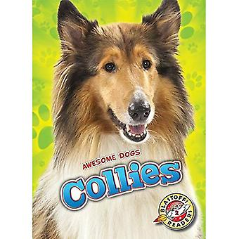 Collies (Awesome Dogs)