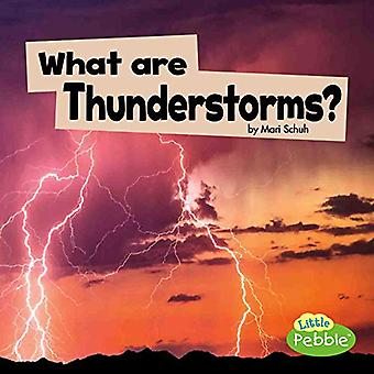 What Are Thunderstorms? (Wicked Weather)