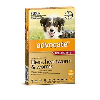 Advocate 6 Pack Large Dogs 10-25kg