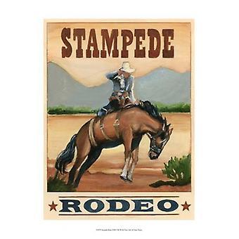 Stampede Rodeo Poster Print door Ethan Harper (13 x 19)