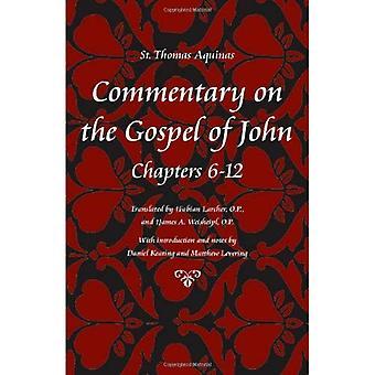 Commentary on the Gospel of John, Books 6-10