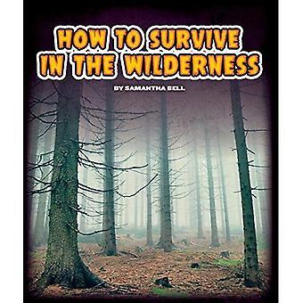 Come sopravvivere nel deserto (guide di sopravvivenza (il mondo del bambino))