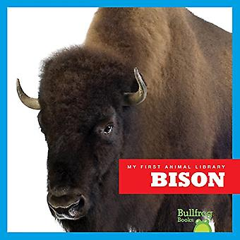 Bison (My First Animal Library)