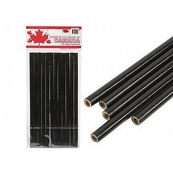 12 matite a carboncino/carta