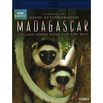 Madagascar (2011) [BLU-RAY] USA import